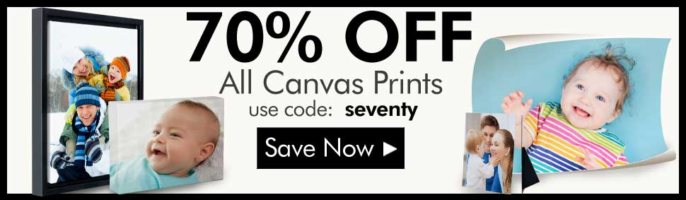 70% Off All Canvas Wall Art