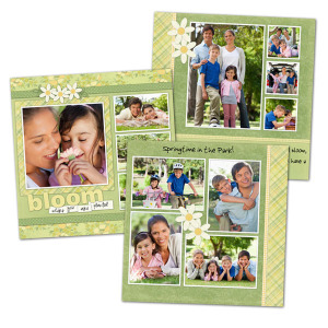 Our variety of styles and custom options are sure to make your scrapbook photos pop.