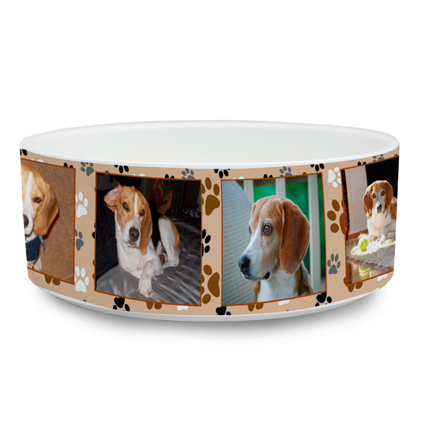 Large size pet bowl with photos ideal for your family dog