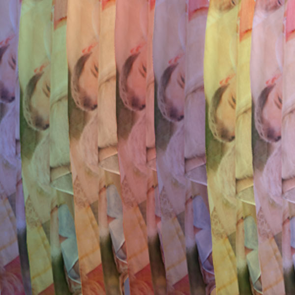 Photo Collage Sheer scarf offers a range of color options