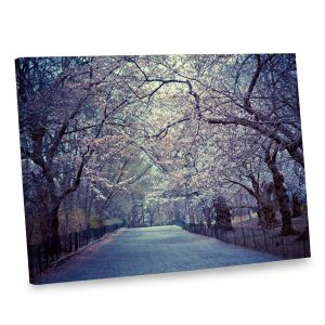 Add the beauty of springtime to your decor with our cherry blossom photo canvas.