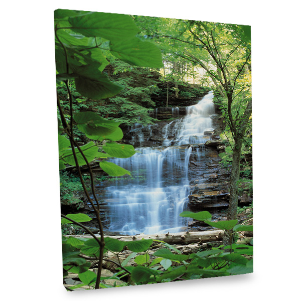 Introduce tranquility into your daily life with our natural falls canvas print.
